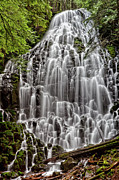 "Mt Hood National Forest Prints - Apparition Print by ""photos by Crow"" Carol Rukliss, Photographer"