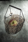 Basket Framed Prints - Apple Framed Print by Joana Kruse