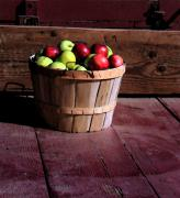 Joanne Coyle - Apple Pickens