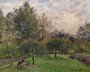 Green Foliage Metal Prints - Apple Trees and Poplars in the Setting Sun Metal Print by Camille Pissarro