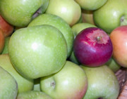 Green Grocer Prints - Apples 1 Print by Charlette Miller