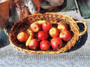 Food Posters - Apples and Bananas in Basket Poster by Susan Savad