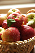 Apple Photos - Apples by HD Connelly
