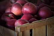 Bushel Photos - Apples In A Crate by Chris  Mautz