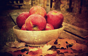 Fall Photographs Photos - Apples by Kathy Jennings