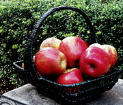 Food Art - Apples by Tanya  Searcy