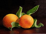 Apricots Originals - Apricots by Jan  Brieger-Scranton