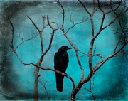 Crow Image Prints - Aqua Twilight Print by Gothicolors And Crows
