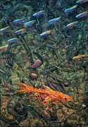 Abstraction Metal Prints - Aquarium 2 Metal Print by James W Johnson
