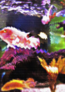 Artistic Fish Abstraction Framed Prints - Aquarium Art 3 Framed Print by Steve Ohlsen
