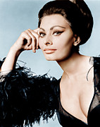 Ostrich Feathers Photo Prints - Arabesque, Sophia Loren, 1966 Print by Everett