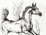 Horses Drawings Metal Prints - Arabian Horse Drawing 1 Metal Print by Angel  Tarantella