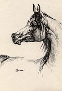 Pen Drawings Originals - Arabian Horse Drawing 26 by Angel  Tarantella