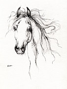 Animals Drawings Posters - Arabian Horse Drawing 4 Poster by Angel  Tarantella