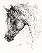Horses Drawings - Arabian Horse Drawing 7 by Angel  Tarantella