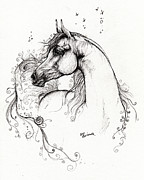 Arabian Drawings - Arabian Horse Drawing 8 by Angel  Tarantella