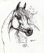Horse Drawing Originals - Arabian Horse Drawing 9 by Angel  Tarantella