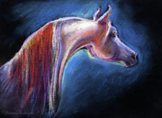 Stallion Drawings - Arabian horse equine painting by Svetlana Novikova