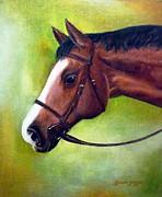 Arabian Horse Print by Gizelle Perez