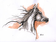 Horse Drawing Originals - Arabian Horse Ink Drawing 3 by Angel  Tarantella