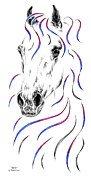 Arabian Horse Drawings - Arabian Horse Style by Kelli Swan