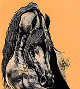 Horse Drawings Prints - Arabian Purebred Print by Cheryl Poland