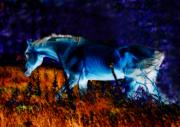 Digital Framed Prints Digital Art - Arabian stallion by El Luwanaya Arabians