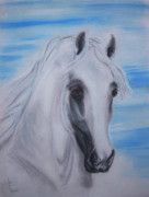 Mustang Mixed Media - Arabian stallion Ghaleon by El Luwanaya Arabians