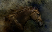 Cowboy Digital Art Prints - Arabian Print by Sue Fulton