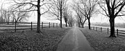 Maryland Photo Originals - Araby Farm Lane by Jan Faul