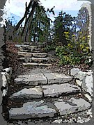 Stone Steps Framed Prints - Arboretum Stairway Framed Print by Tim Allen