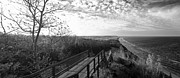 Arcadia Photo Prints - Arcadia Overlook in Black and White Print by Twenty Two North Gallery