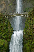 Arched Bridge Photos - Arch Bridge and Multnomah Falls by Ted J Clutter and Photo Researchers