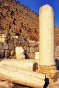 Homeland Posters - Archaeological Garden Southern Temple Mount Poster by Thomas R Fletcher