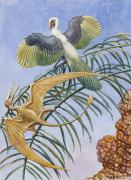 National Geographic Society Art Prints - Archaeopteryx And Pterosaurs Were Some Print by Charles R. Knight
