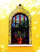 Darian Day Photos - Arched Window by Darian Day by Olden Mexico
