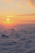 Winter Sunset Posters - Arctic Poster by P.folk / Photography