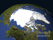 Arctic Sea Ice, 1979 Print by NASA / Science Source