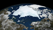 Sea Ice Prints - Arctic Sea Ice, 2008 Print by NASA/Goddard Space Flight Center Scientific Visualization Studio