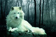 White  Digital Art Posters - Arctic Wolf Poster by Julie L Hoddinott