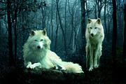 Wolves Digital Art Metal Prints - Arctic Wolves Metal Print by Julie L Hoddinott