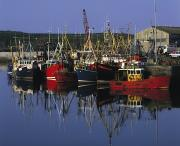 Reflection Of Buildings In Water Prints - Ardglass, Co Down, Ireland Fishing Print by The Irish Image Collection