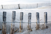 Fence Row Photos - Aresquiers Beach by Anne Petitfils