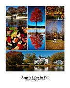 Photo Collage Prints - Argyle Lake Fall Poster Print by Vicki Jauron
