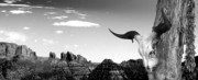 Black And White - Arizona by Ben and Raisa Gertsberg
