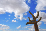 Sky Scape Art - Arizona Blue Sky by Susanne Van Hulst