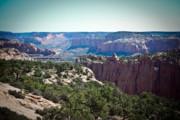 Arizona Desert Landscape Print by Ryan Kelly