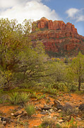 Sedona Digital Art Prints - Arizona Outback 3 Print by Mike McGlothlen