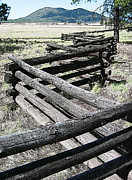 Split Rail Fence Digital Art - Arizona Rail Fence by John Haldane