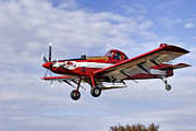Arkansas Razorbacks Metal Prints - Arkansas Razorbacks Crop Duster Metal Print by Jason Politte